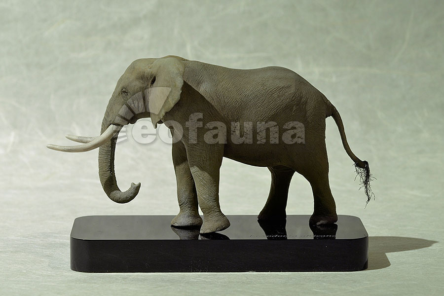 African Elephant Toys For Boys : Eofauna hyperrealistic proboscidean figurines scale
