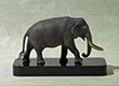 Elephas maximus - 3