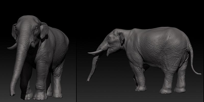 Juvenile Mastodon
